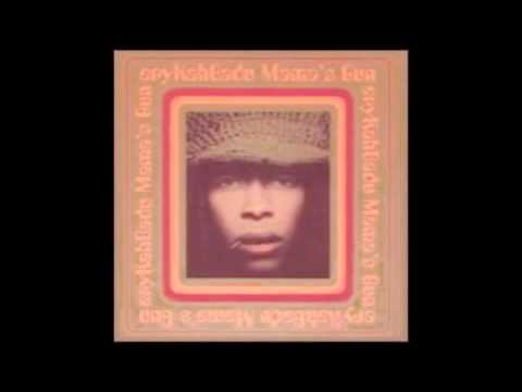 Erykah Badu  Bag Lady