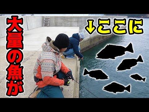 足元に集まっている大量の魚を狙い釣る!!