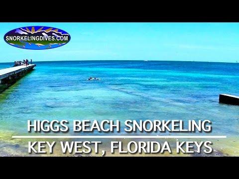 snorkeling-higgs-beach-|-key-west