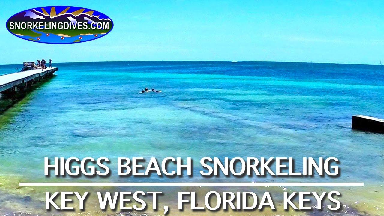 Snorkeling Higgs Beach Key West Youtube
