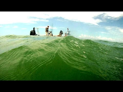 Sharks & Tarpon - North American Fisherman 2013 SHOW 12