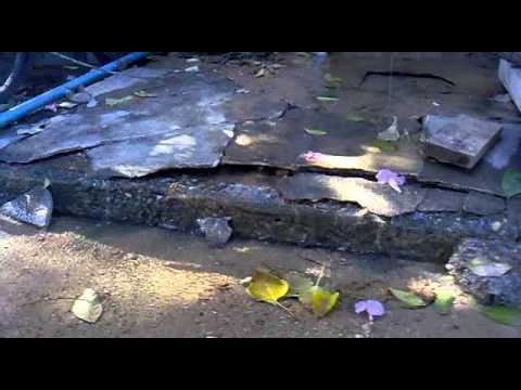 การบริการของประปาภูมิภาคท่อแตก5ทุ่มเมื่อคืนจนป่านนี้ยังไม่มาใครรับผิดชอบคับแฟลตปลาทอง