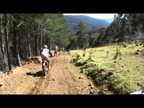 Cool single track, Mt Lloyd Tasmania.MP4