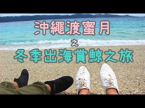 小v旅行-|-【沖繩冬季出海賞鯨之旅】