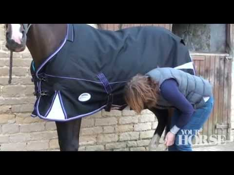 Fitting A Rug Your Horse Youtube