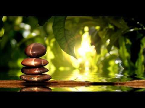Track 13 relax with zen flute youtube - Salon toilettage zen attitude ...