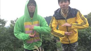 Look back / N.(ex.とりあえ's) thumbnail