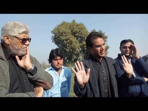 Moringa Champion Prof. Dr. Shazad Maqsoor Ahmad Basra is talking about Moringa