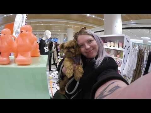 Come Luxury Shopping! Part1 Vlog1 BAGS SHOES & SUNGLASSES: GUCCI DIONYSUS + MARMONT