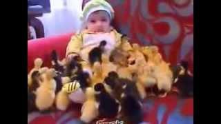 Ördek yavruları ve bebeğin sevimli anları..!