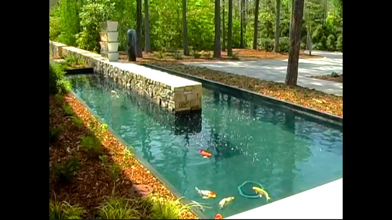 Building a mega koi pond youtube for Koi pond pics
