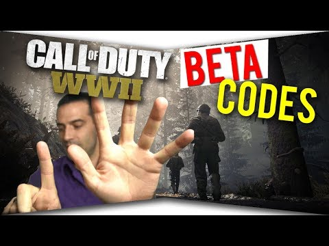 how to play the ww2 private beta