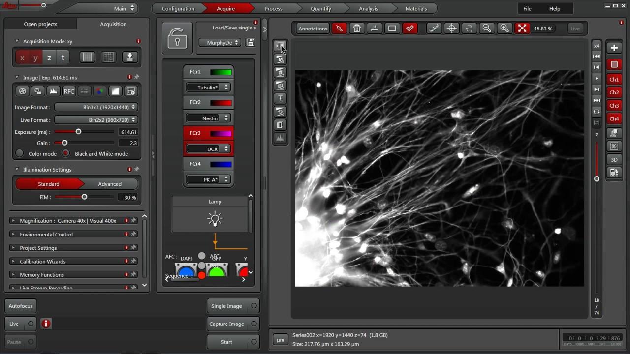 Leica Las X 3 3 Navigator Workflow By Las X Tips