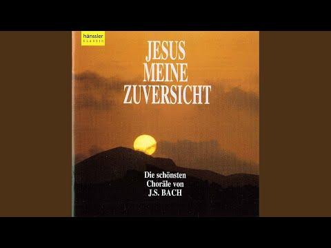 Barmherziges Herze der ewigen Liebe, BWV 185: Chorale: Ich ruf zu dir, Herr Jesu Christ