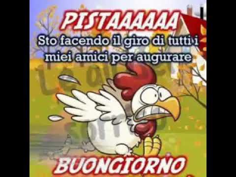 Arriva il buongiorno pistaaa youtube for Buongiorno divertente sms