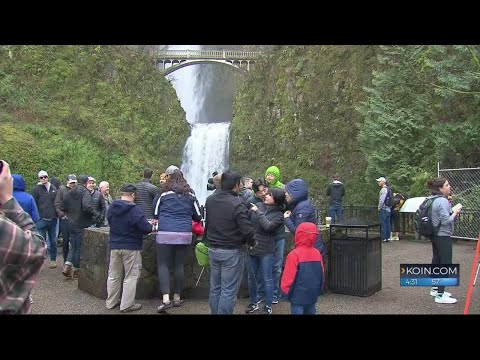 Part of Multnomah Falls is back open for viewers