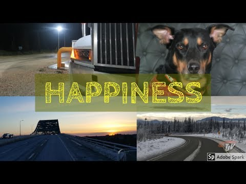 TJV Sun - WHAT MAKES A TRUCKER HAPPY?? - #1228