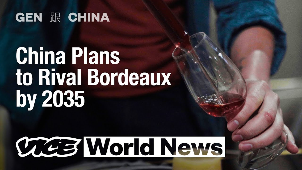 Download Could China's Booming Wine Industry Lead to an Ecological Disaster? | Gen 跟 China