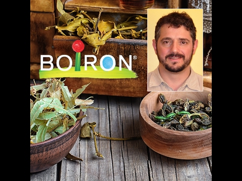 Boiron: 3 Must-Have Homeopathic Remedies For Your Medicine Cabinet