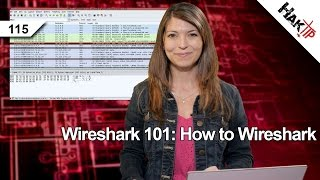 Wireshark 101: How to Wireshark, Haktip 115