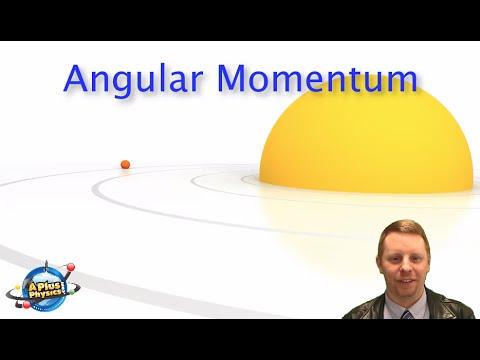AP Physics 1 - Angular Momentum