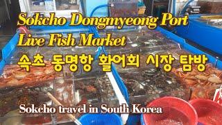 속초 동명항 활어회 시장 탐방/Sokcho Dongmy…