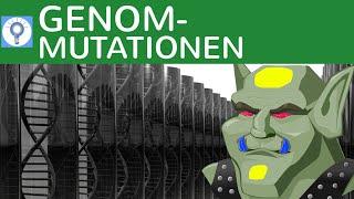 Genommutationen: Trisomie, Monosomie, Geschlechts-Anomalien, Down-Syndrom - 3   Genetik