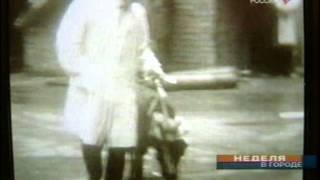 Пересадка второй головы собаке, банк оживлённых внутринних органов.