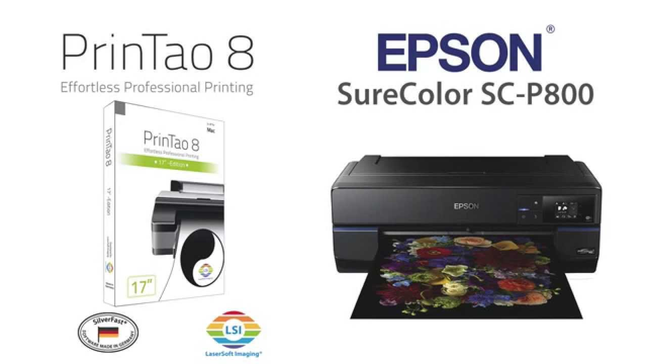 PrinTao 8 & Epson SureColor SC-P800 (English)