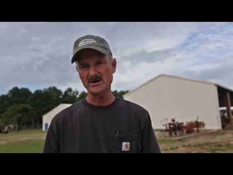 Tobacco a money crop for South Carolina