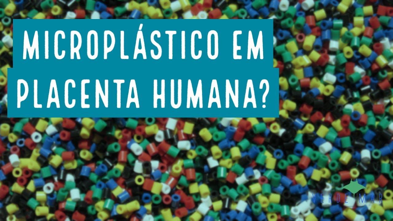 Microplástico encontrado em placenta humana