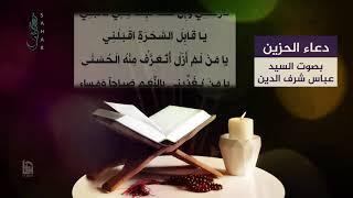 دعاء الحزين السيد عباس الموسوي Mp3