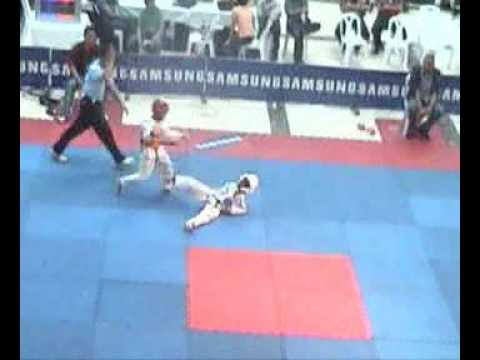 Taekwondo Knockout - MOSES CHAN