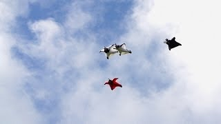 Possibly The Best Wingsuit Flying Ever Captured On Video | HeliBASE 74 ep. 4