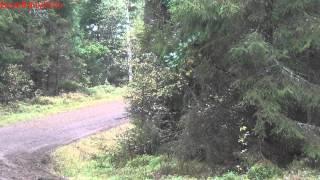 Retursladden 2012 - Avåkning Opel Ascona B