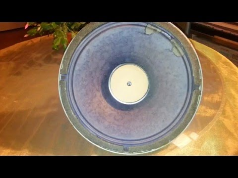 "Vintage 12 inch low-range speaker 8GD1 from tube radio ""Riga 10"""