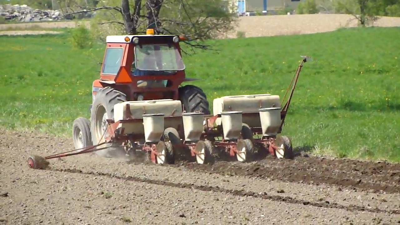 Planting corn with MF265 and IH 56 (Plate) Planter - YouTube