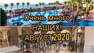 Египет 2020 Шарм Эль Шейх Август 2020 Отель Jaz Belvedere Resort 5 Анимация Мини Диско Белиденс