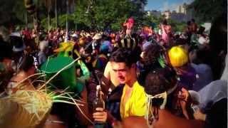 Ciência e Carnaval