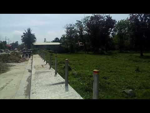 Lucena Quezon Property For Sale along the National Road 6.9 hectares near Newly Municipal Office.