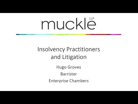 Insolvency Practitioners and Litigation