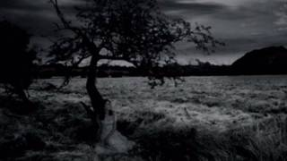 My Dying Bride - Sear Me MCMXCIII