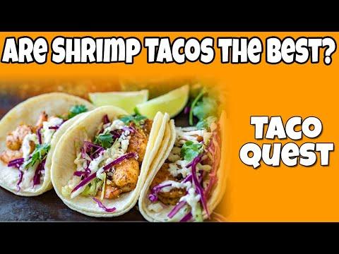 The Taco Quest Continues!