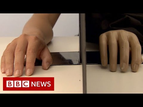 What do you feel when you watch this? - BBC News