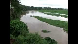 Arpa River Bilaspur Chhattisgarh in Rainy Season Sawan