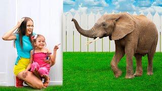 Uma história infantil com animação para crianças a partir de Maya e Mary