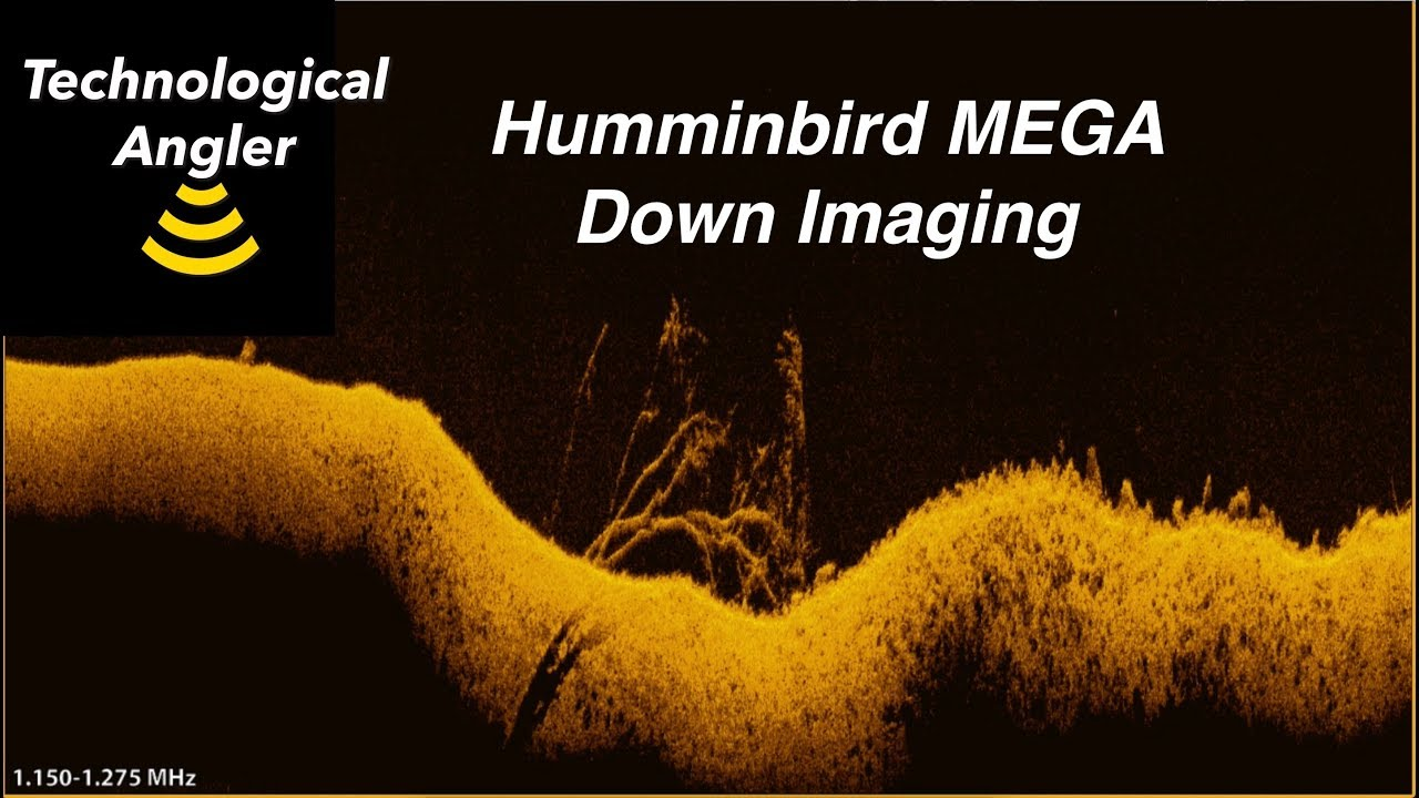 MEGA Down Imaging | The Technological Angler