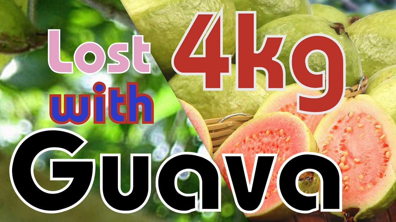 Lose 4 kg with guava. Do it now! - Good Health - WEIGHT ...