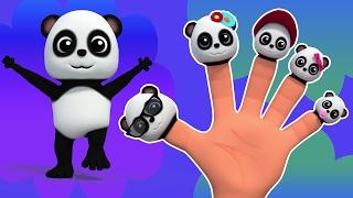Bé Bảo gấu trúc ngón tay gia đình | vần điệu trẻ | Rhyme For Children | Baby Bao Panda Finger Family