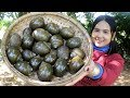 Awesome Cooking : Grilled Snail With Fish Paste Sauce Delicious Recipe - Cook & Eating Food Show